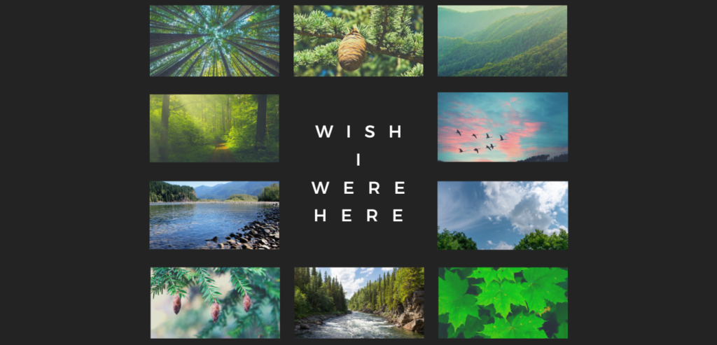 Array of forest, sky, and water images, text of longing