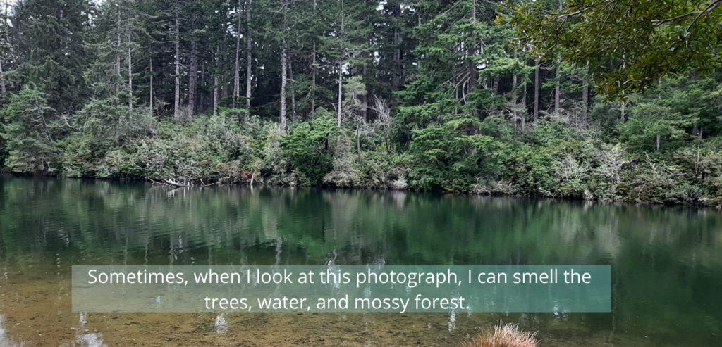 words of longing for forest and water with a photo of same